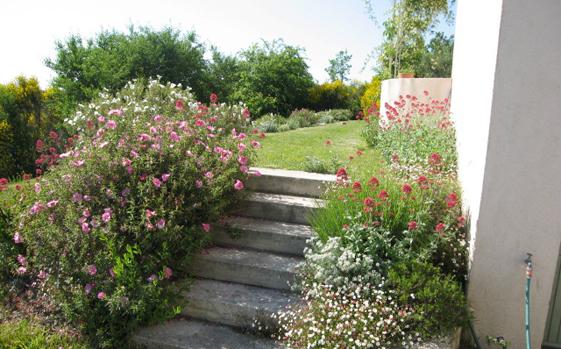 Jardins et paysages de la nesque cr ation entretien et for Entreprise jardinier paysagiste